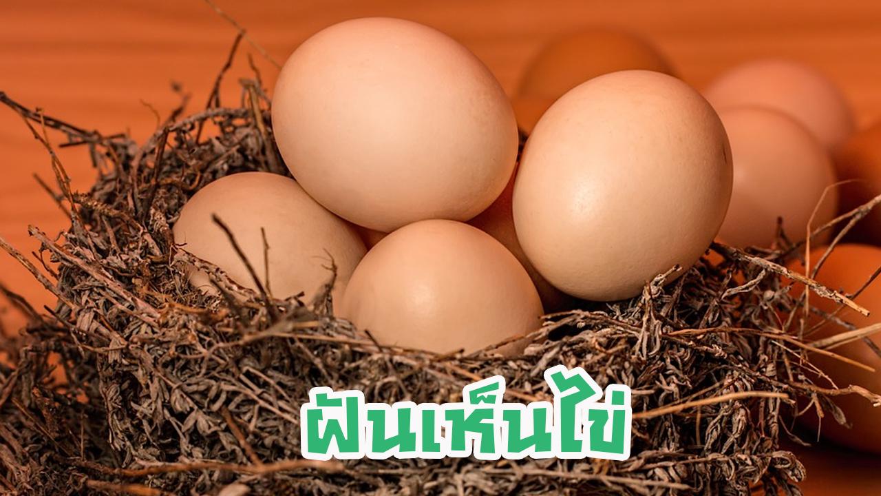 ฝันเห็นไข่ หมายความว่าอะไร