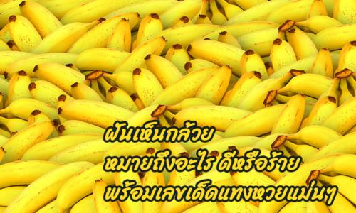 ฝันเห็นกล้วยหมายถึงอะไร ดีหรือร้าย พร้อมเลขเด็ดแทงหวยแม่นๆ